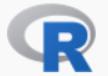 the R Programming Language R Revolution Analytics